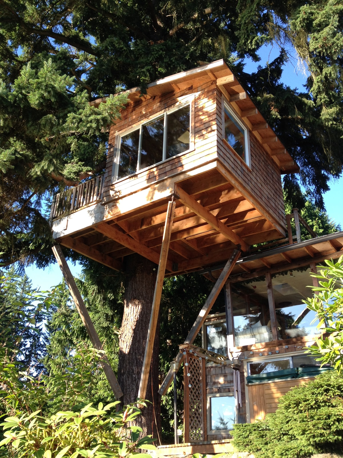 Cottage Lake Tree House B and B