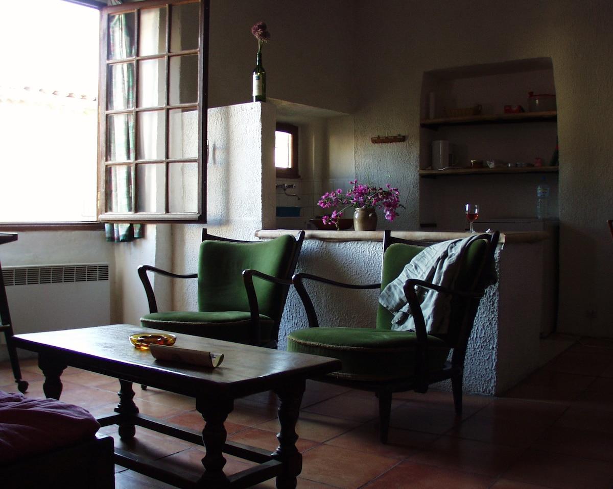 Cuisine ouverte et séjour open kitchen and living room