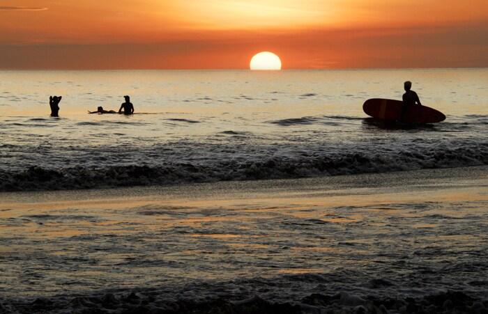 Condo with Ocean & Wildlife Views