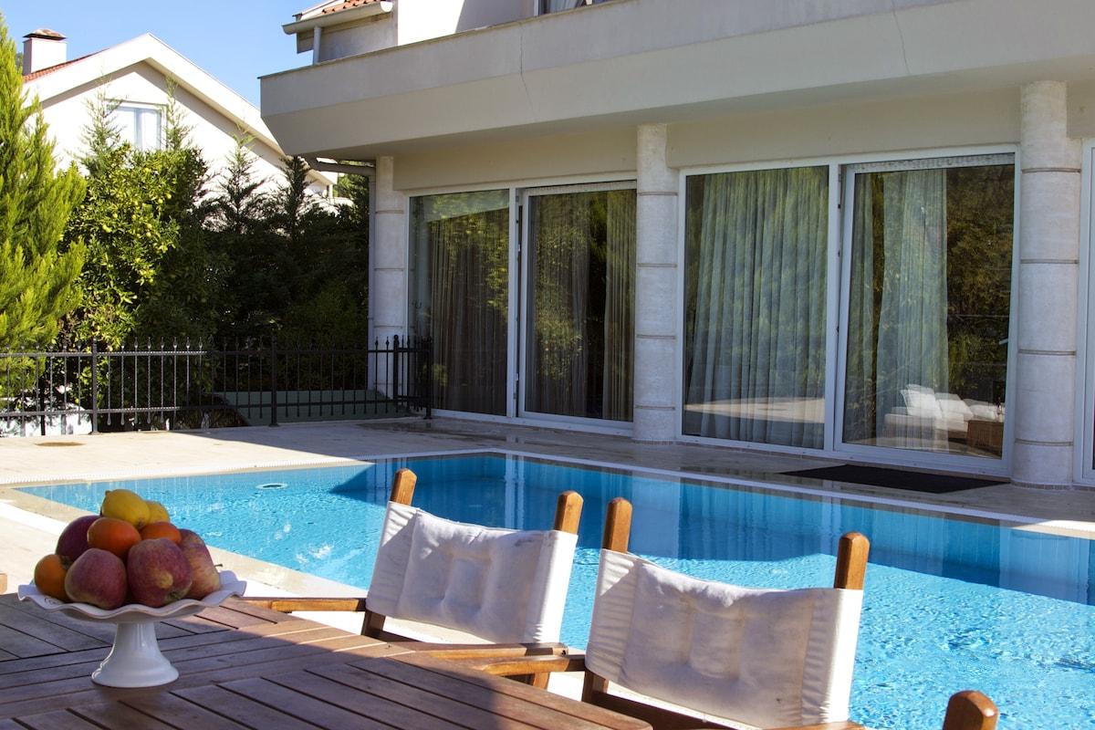 Modern Poolside Villa