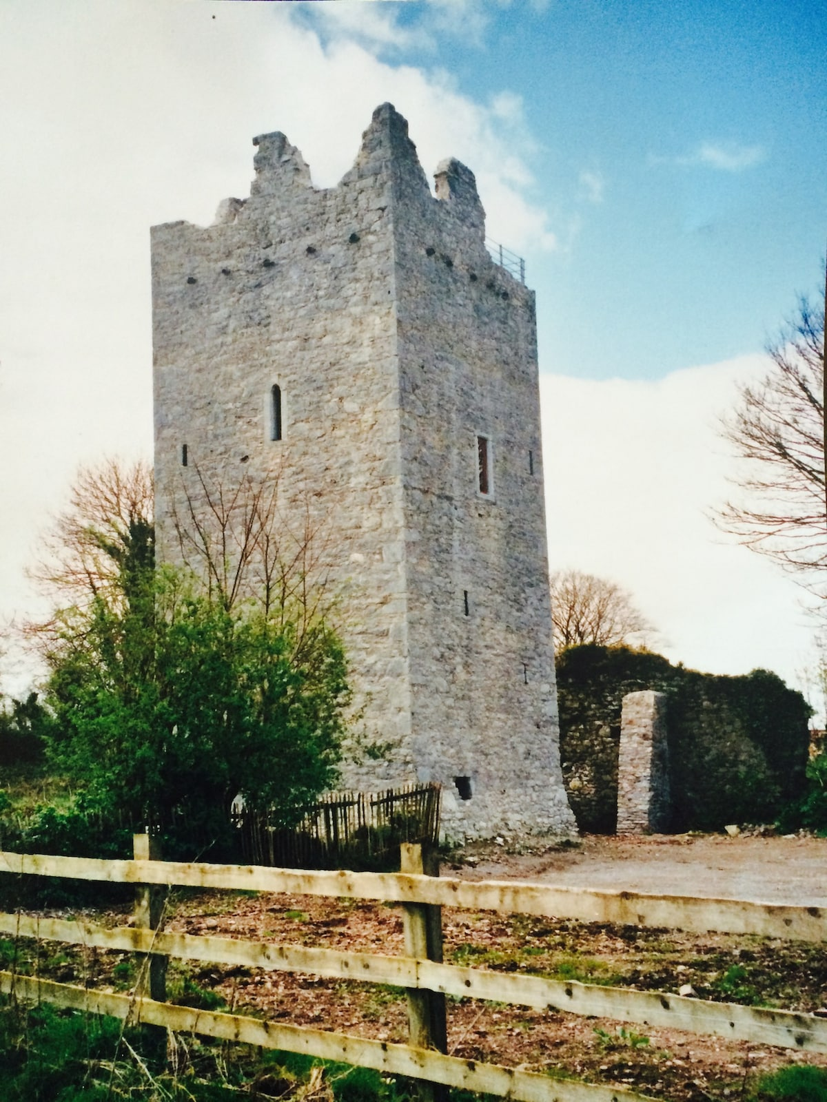 Ballintotis Castle, East Cork