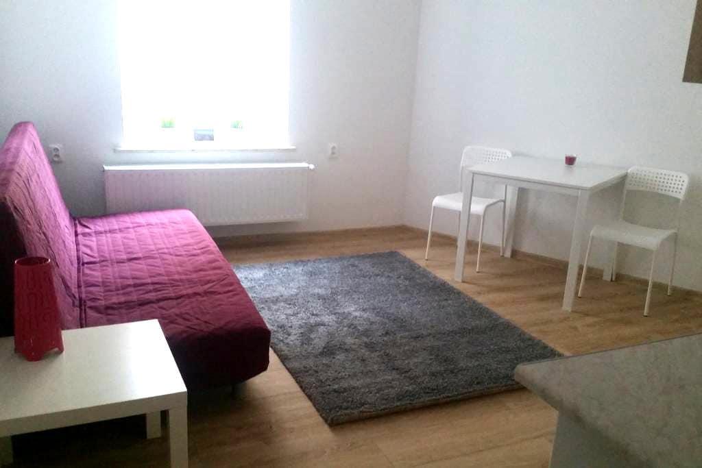 CynamonApart m23 Kościuszki - Łódź - Apartamento