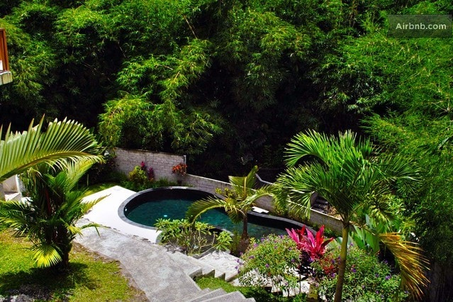 A professionally maintained 50 foot pure stone pool.