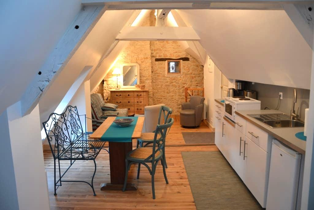 Cosy studio apartment in historic Vezelay - Vézelay - Apartemen