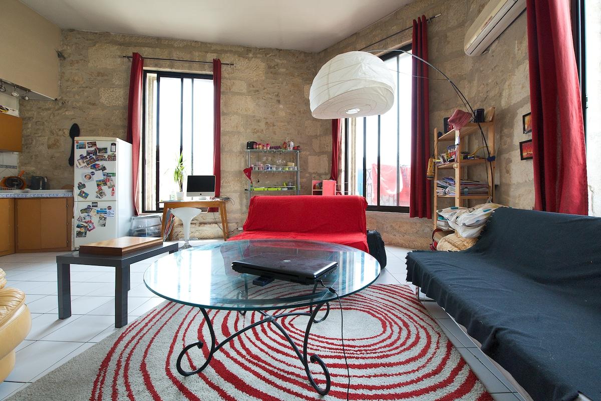 Grand appartement coeur de ville