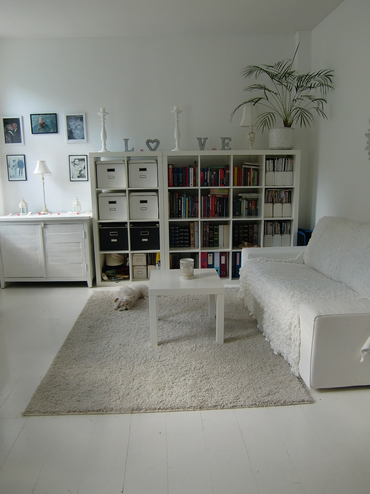 Livingroom. I will put matresses on the floor and remove all pictures/personal belongings.