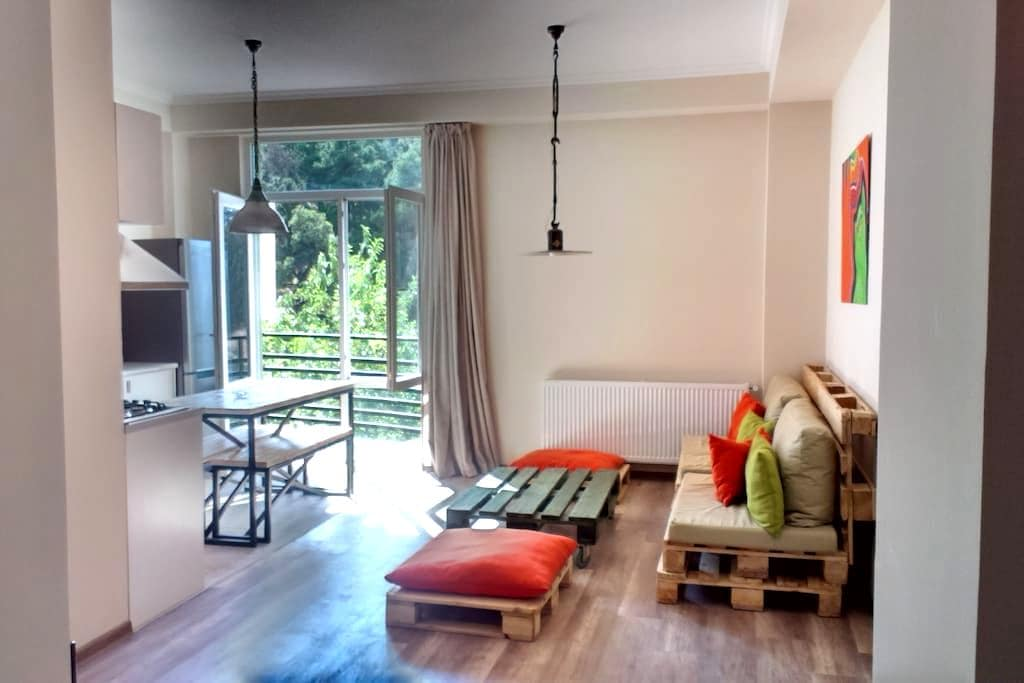 1BR Flat & Balconies in upper Vake - Tbilisi - Appartement