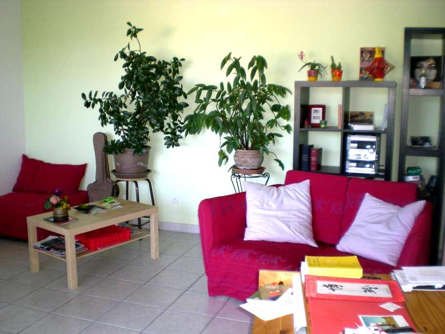 chambre calme aménagée+accès appart - Bron - Lejlighed