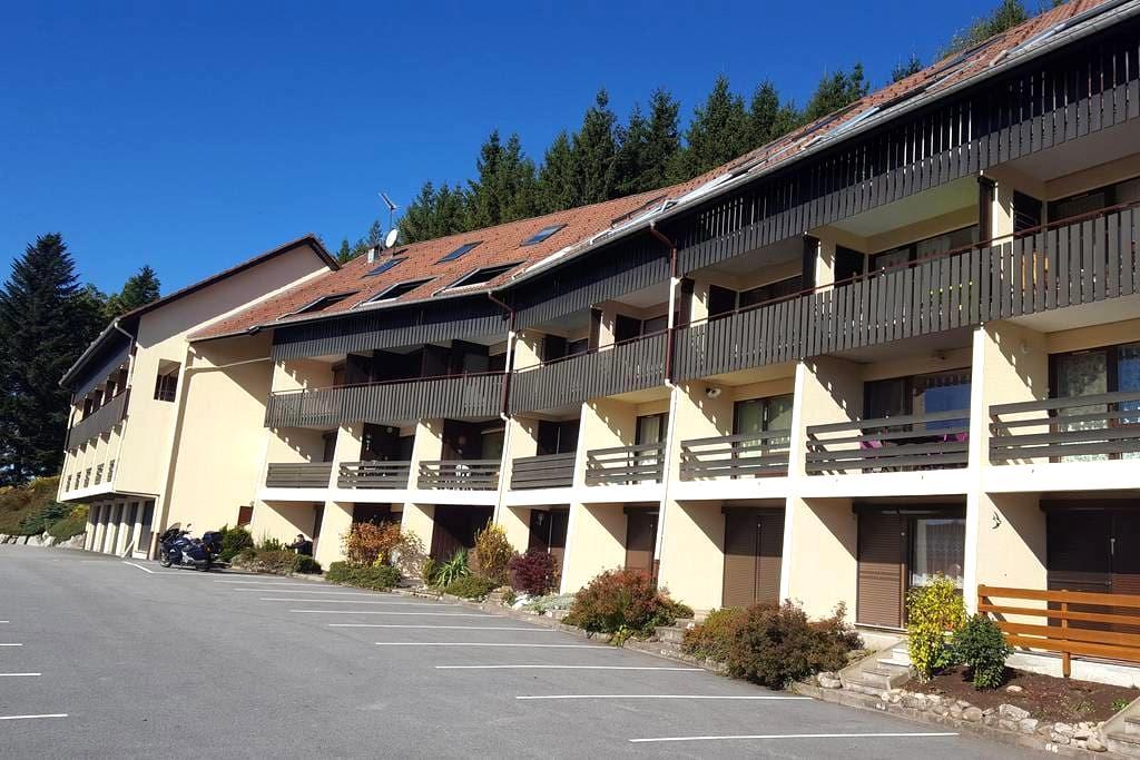 Beau Duplex à 10min de Gérardmer - Le Tholy - Wohnung
