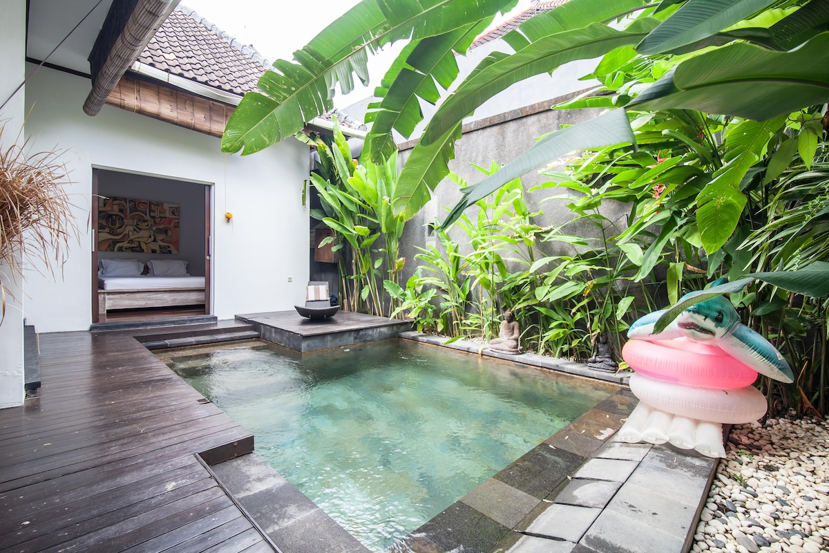 Homy Cozy 2 bedrooms & plunge pool
