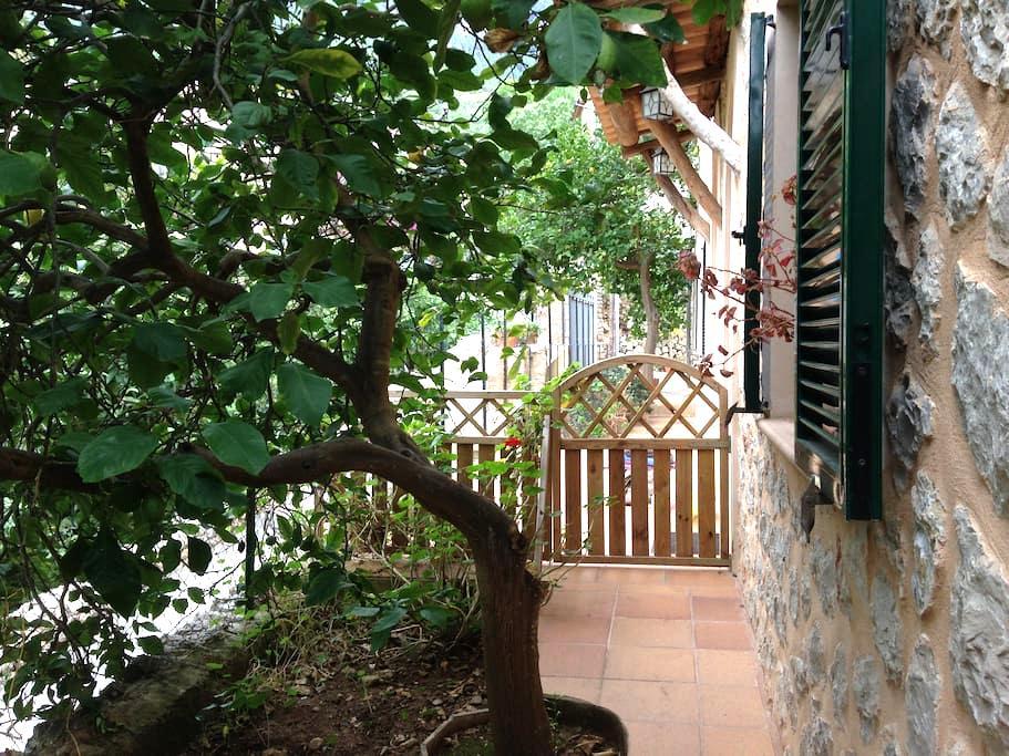 Apartamento Agradable y Tranquilo - Deyá - Apartment
