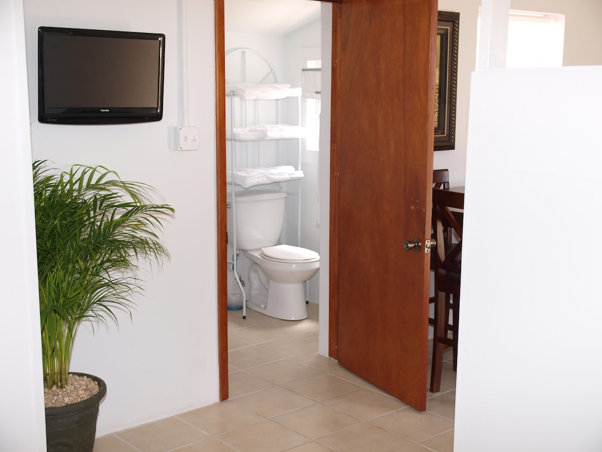 View of the bathroom from the main bedroom area