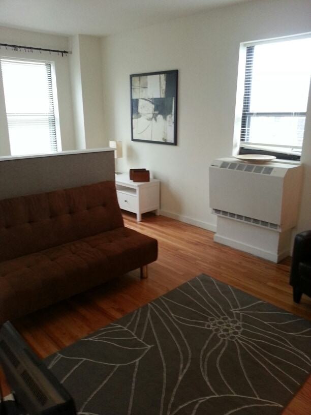 """Living room with futon for occasional """"non-partnered"""" guests and that's a TV with DVD player (lower left)."""