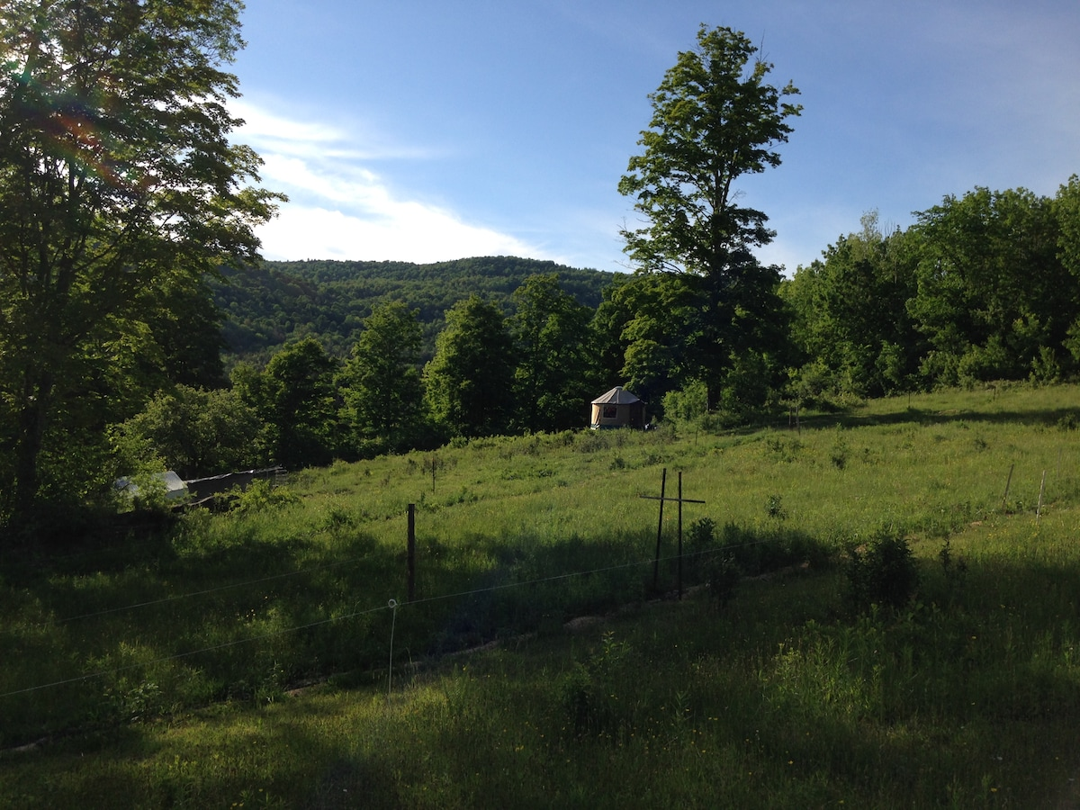 Eco Farm Stay- In our little Yurt!!