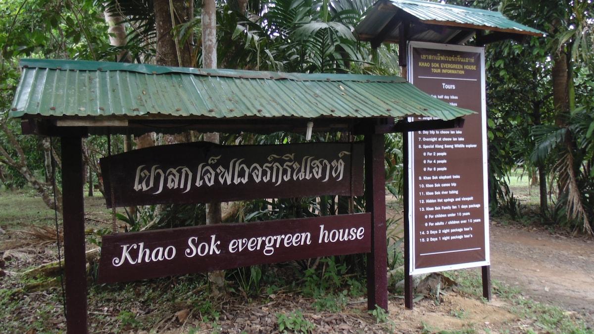 Khao Sok Evergreen House Suratthani