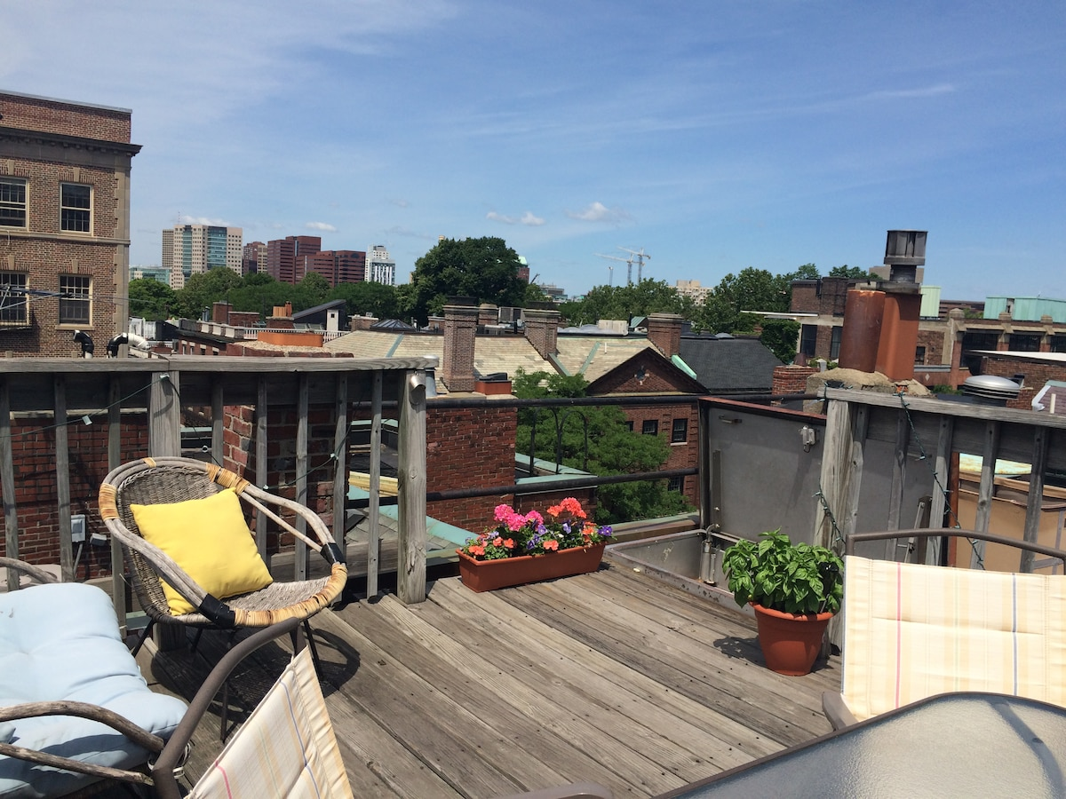 Private Roof Deck in Beacon Hill