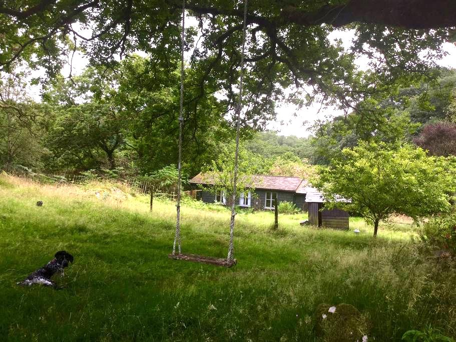Snowdonia cabin in nature with hot tub - Blaenau Ffestiniog - Chalet