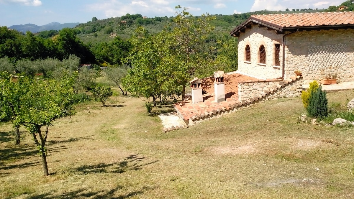 Country house Olivo