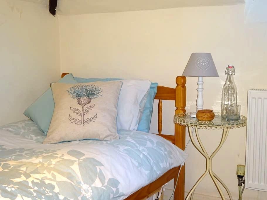 twin/single room overlooking garden - Exeter - Rumah