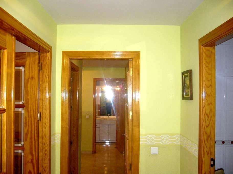 CENTRICO PISO EN TOMELLOSO - Tomelloso - 公寓