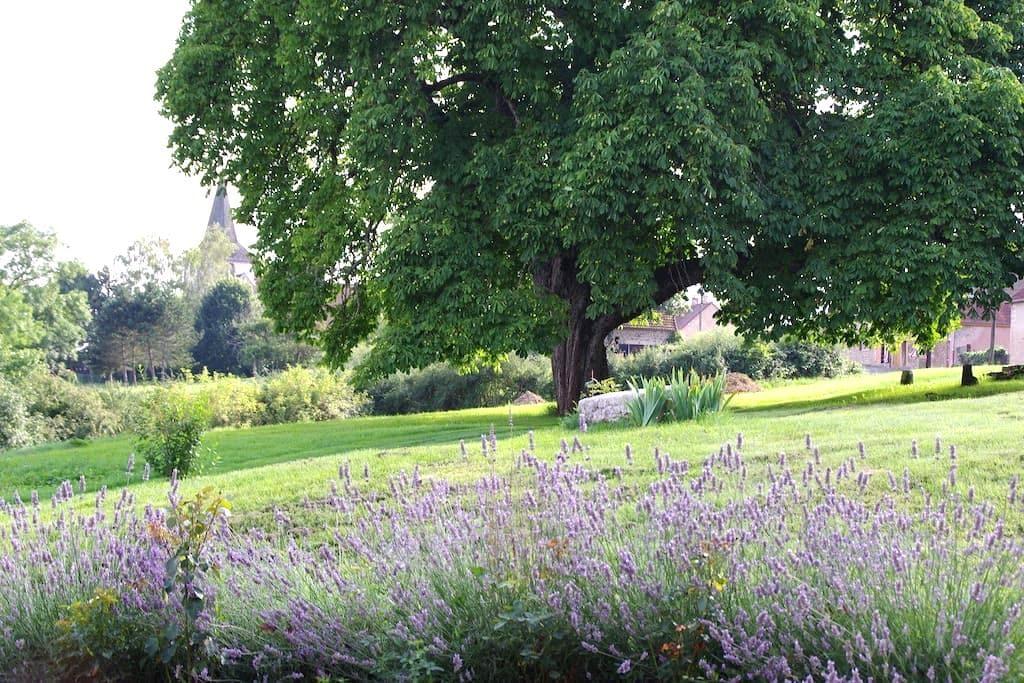 Au coeur de la Bourgogne  - Clomot - Rumah
