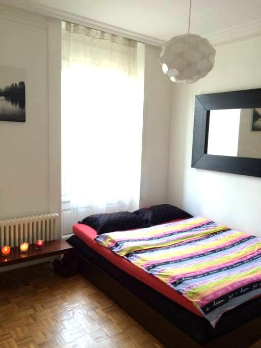 Cozy apt in the centre of Geneva!!! - Ginevra - Appartamento