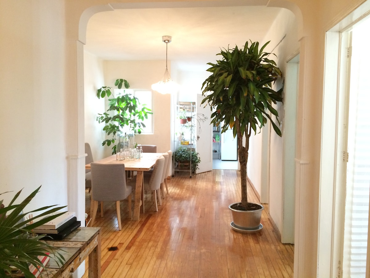Beautiful Room in Heart of Condesa!
