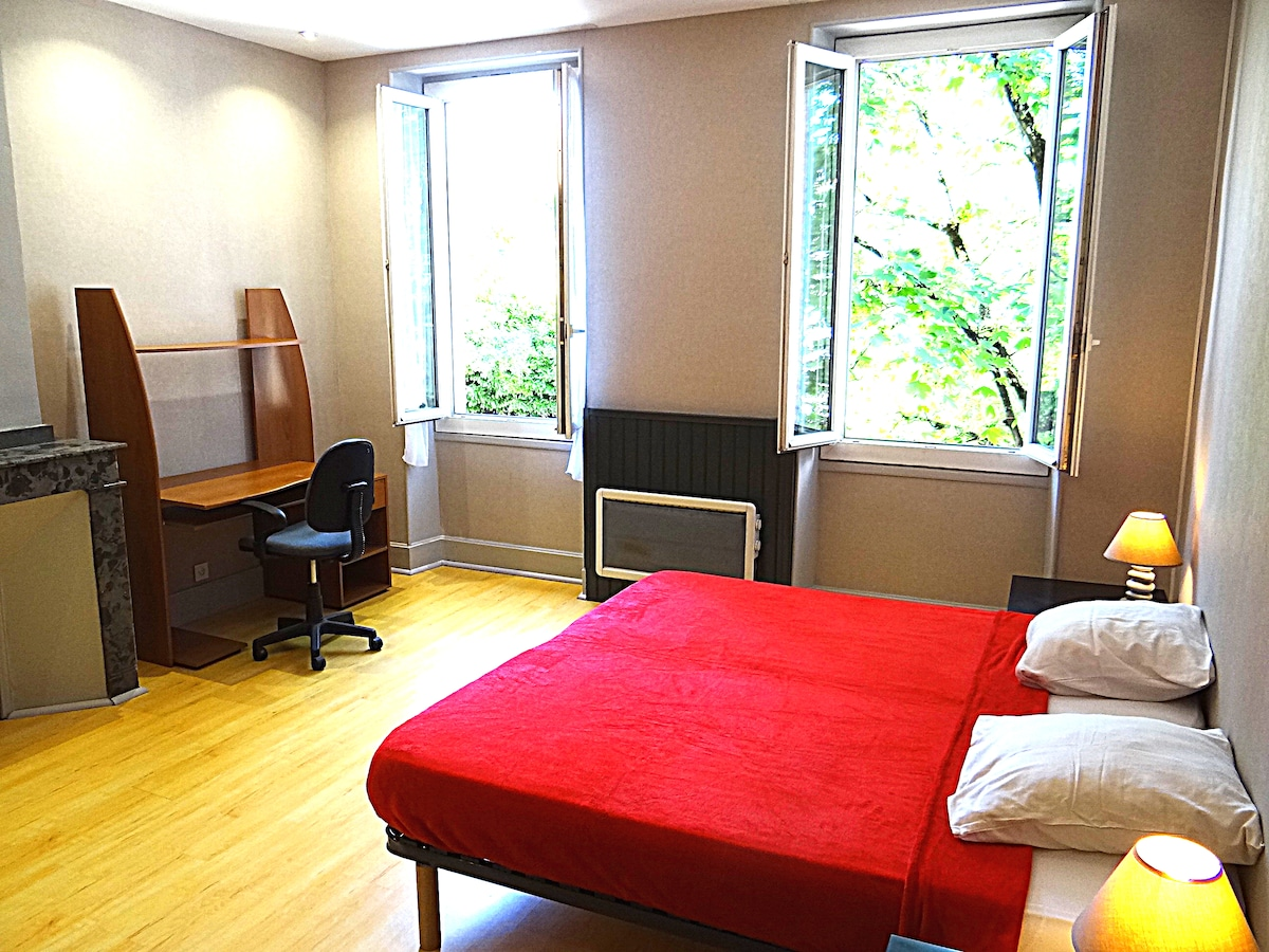 Spacious room in city center