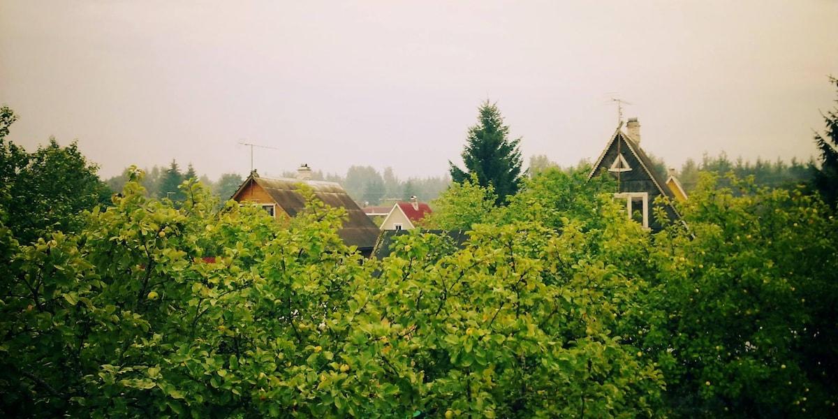 Дачный домик в тихом месте