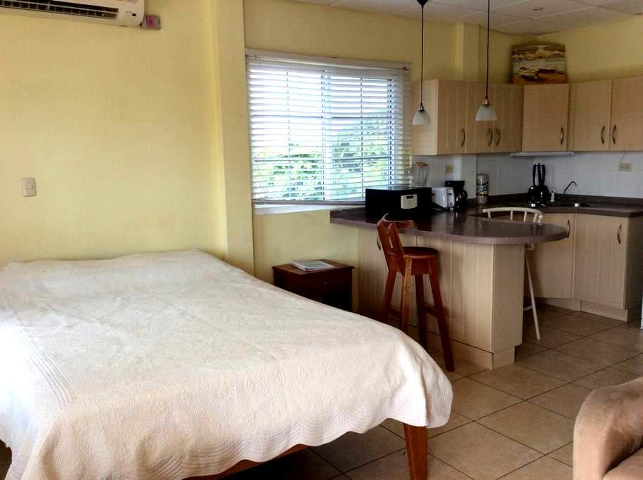 Bocas Condo in the Heart of Town - Bocas del Toro