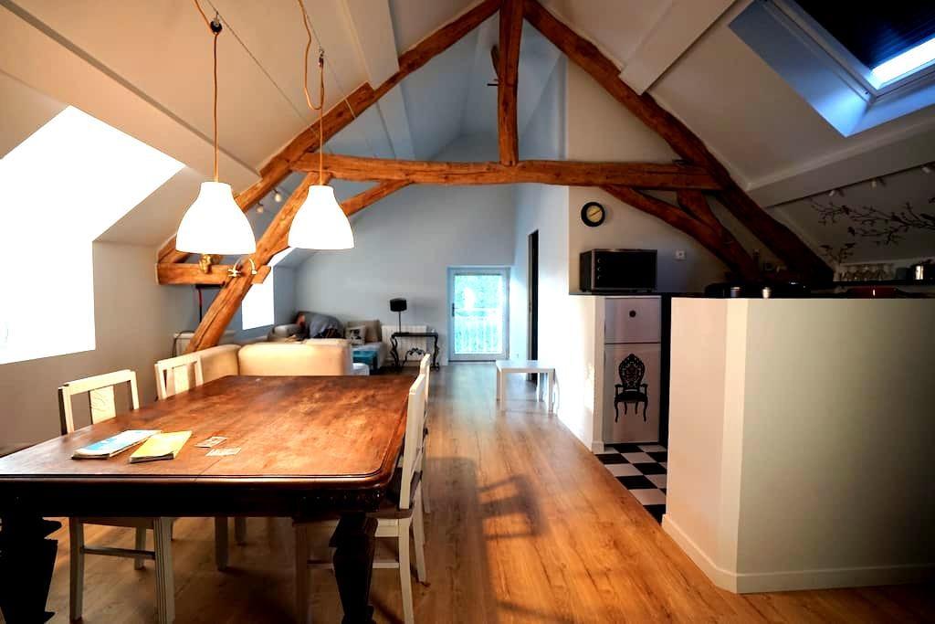 Gite 65m2-2 chambres-4 couchages - Vincelottes - House