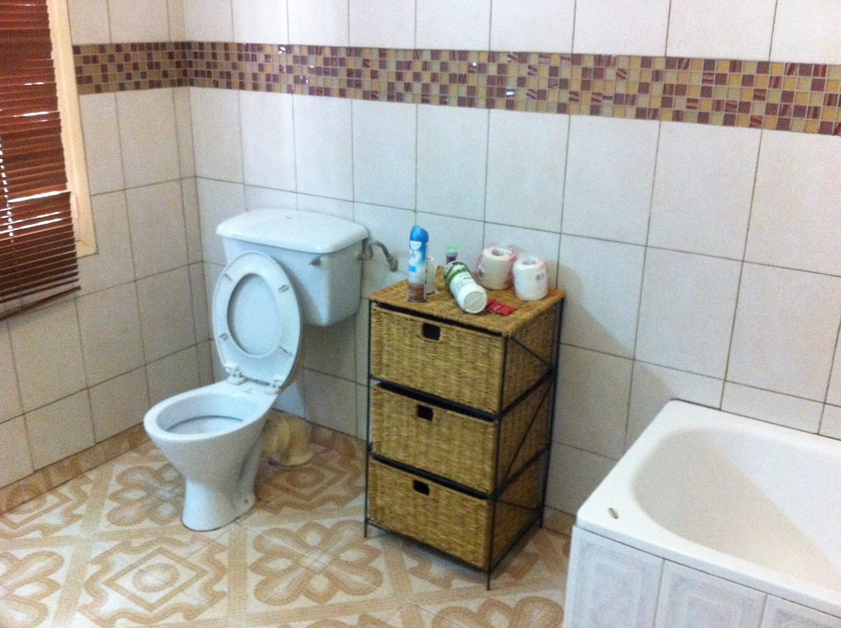 Shared toilet and bathtub
