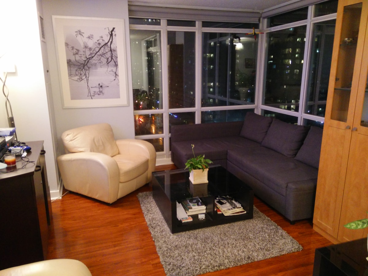 Private Bedroom+Bath downtown TO
