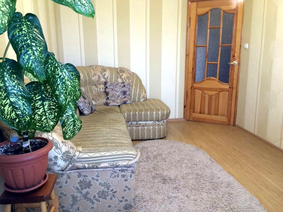 Cozy apartment in the center of Zhytomyr - Zhytomyr - Apartmen