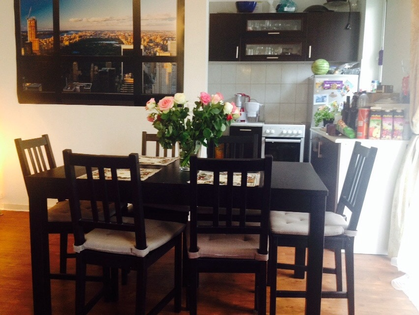 Central, sunny, quiet 1-BR Flat