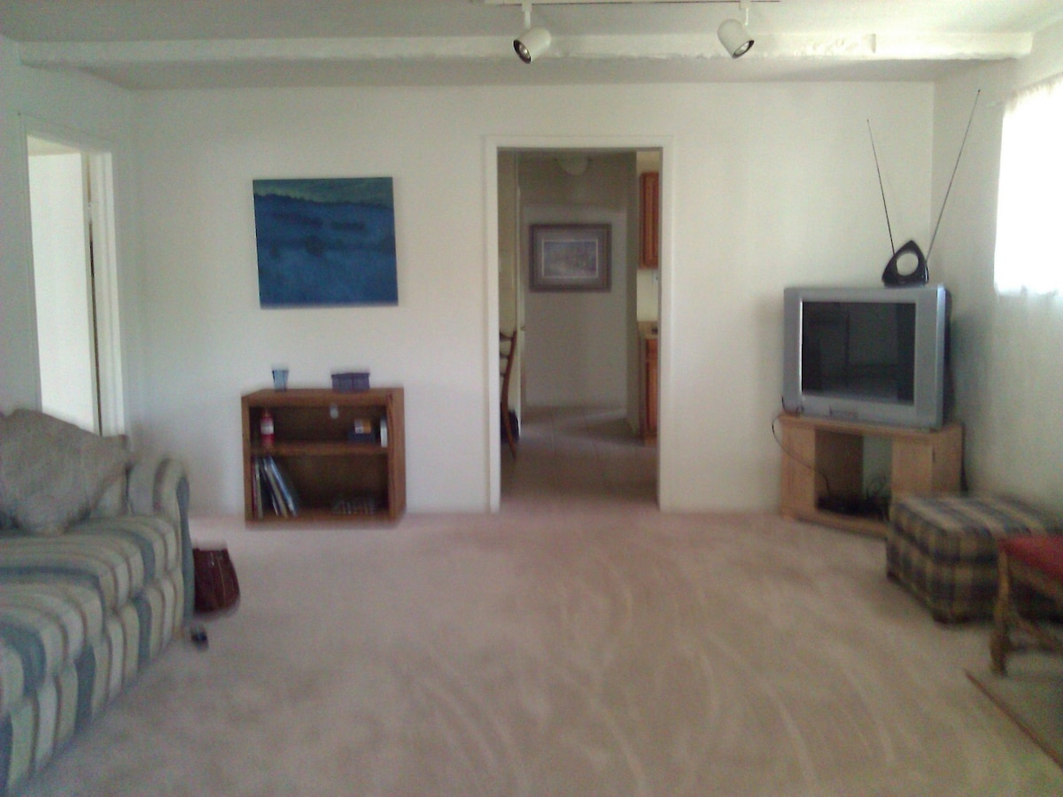 Livingroom with a lot of open space, tv, dvd player.  Sleeper couch that is almost new