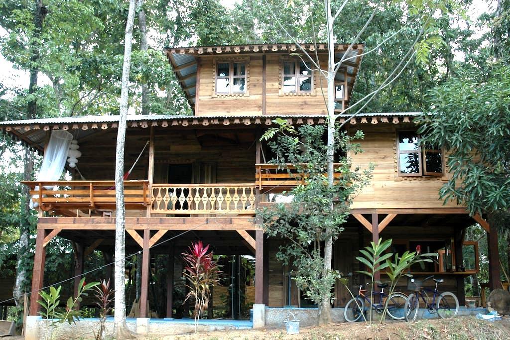 Casa de la Trepada - Puerto Viejo de Talamanca
