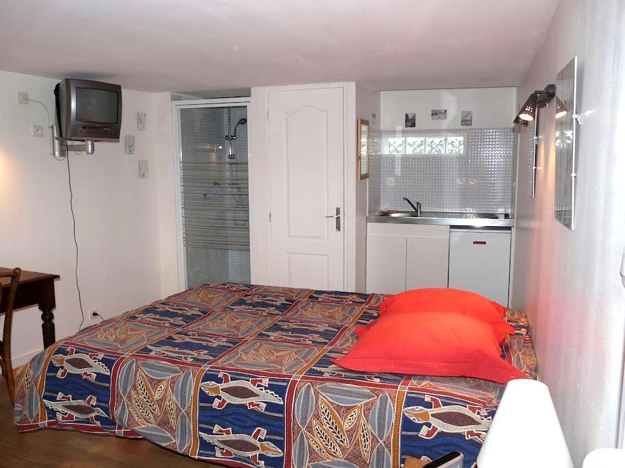 studio apartment,quiet, in Lyon - Lyon - Casa