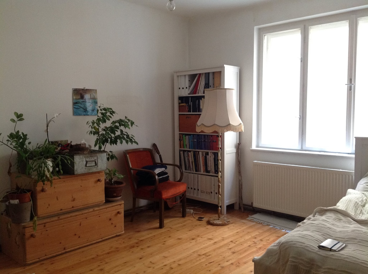 Quiet, Spacious Room in Vienna