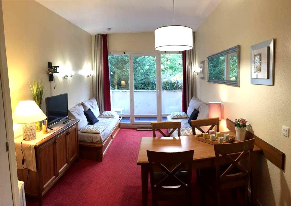 Appt confortable, vue sur montagne - Saint-Lary-Soulan - Wohnung