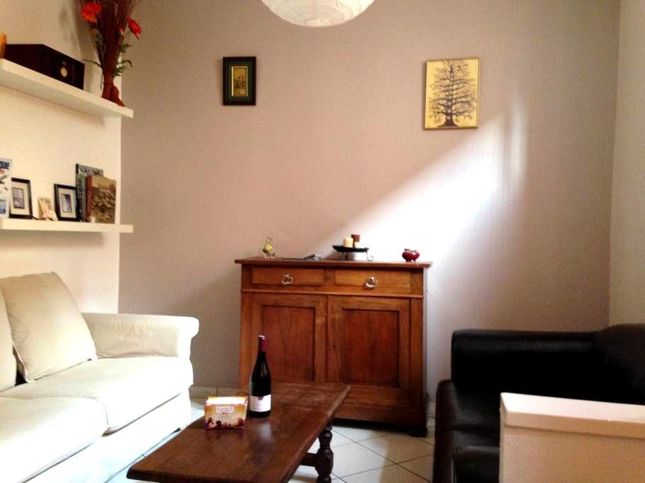 Appartement F2 hyper centre 48 m2 - Nancy - Lejlighed