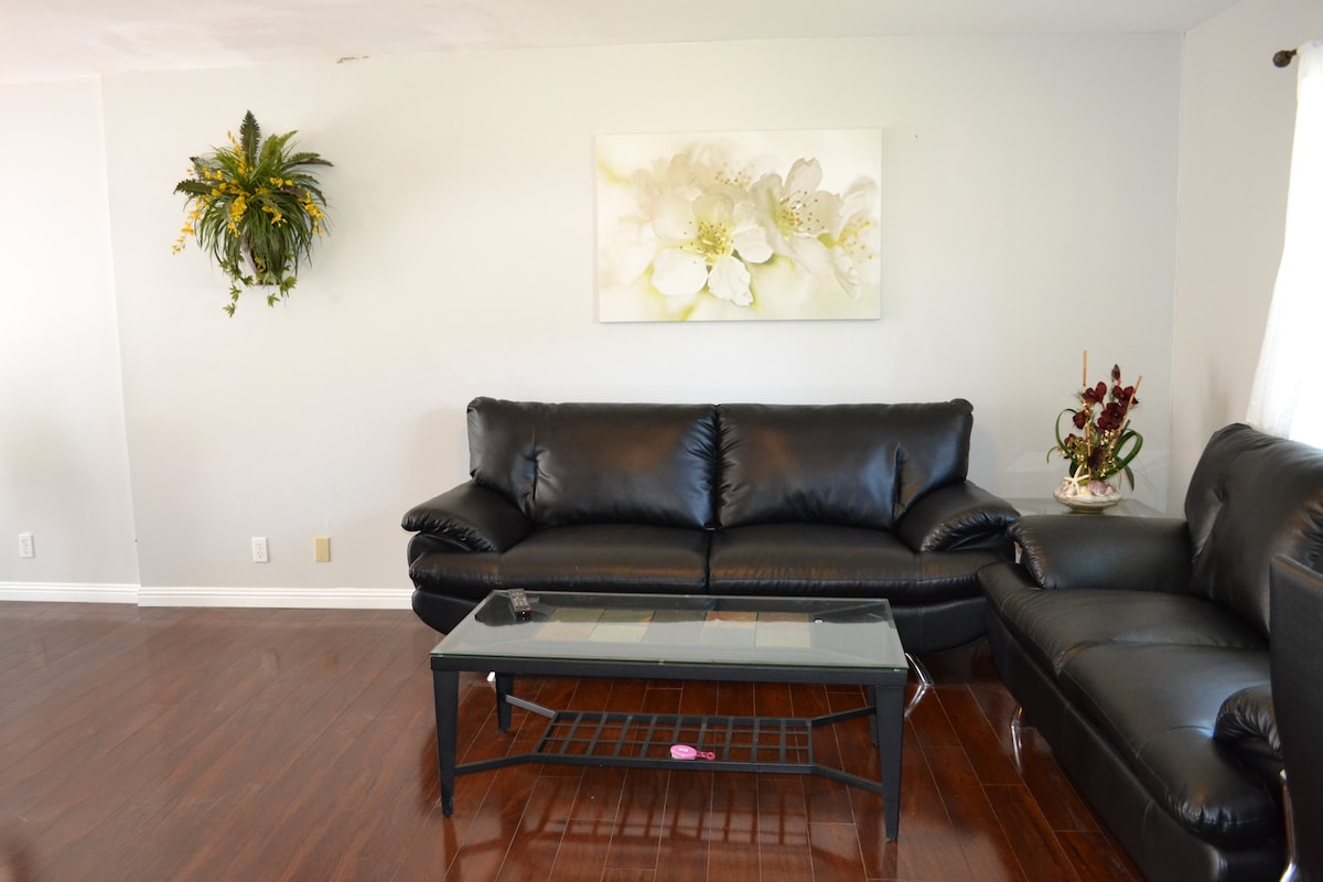 Beautiful sitting room with brand new leather sofa