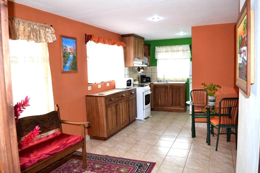 Cozy Apartment Fully Equipped - San Jerónimo