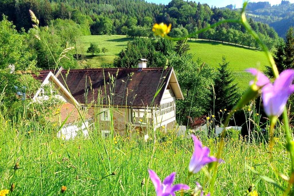 Großkandlerhaus mitten in der Natur - Unterdambach - Wikt i opierunek