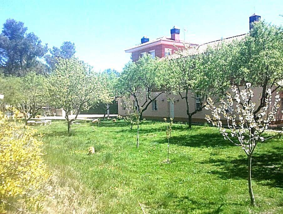 Montserrat (El Bruc) Can Gifre - Urbanización Montserrat Parc (El Bruc) - Bed & Breakfast