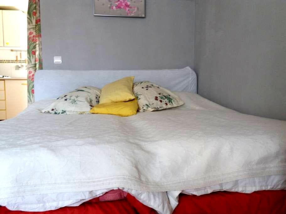 APT.1-Estudio. - Valladolid - Apartment