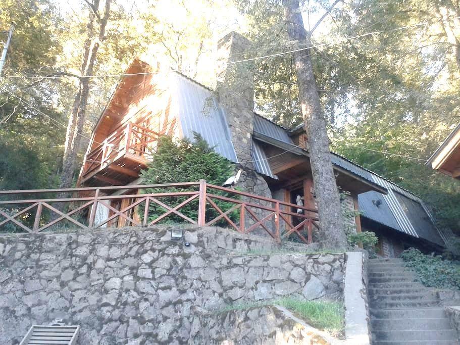 Habitación en San Martin de los Andes - San Martin de los Andes - Casa