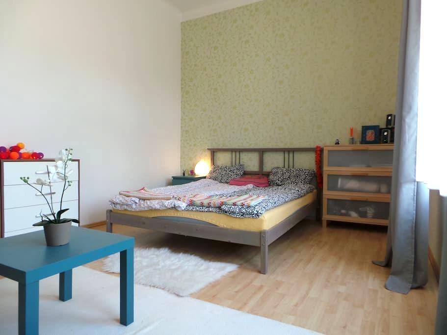 Prague B&B -Close to Center - Praha - Guesthouse