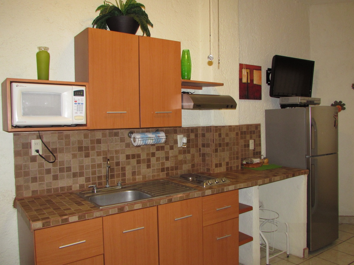 Full view of the kitchennete, you can see the built-in stove top, hood, microwave, big sink, and huge fridge.