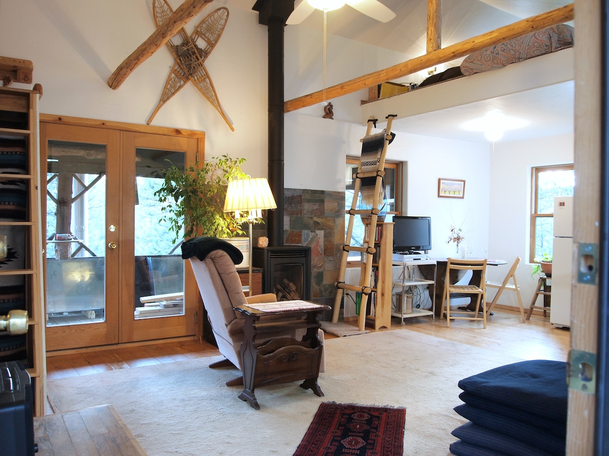 The great room with 3 skylights and the open lofts makes for an airy feeling.